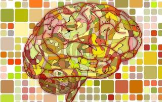 Mozak traži puno radno vreme | Mentalno aktivni | blog | NLP | CARS