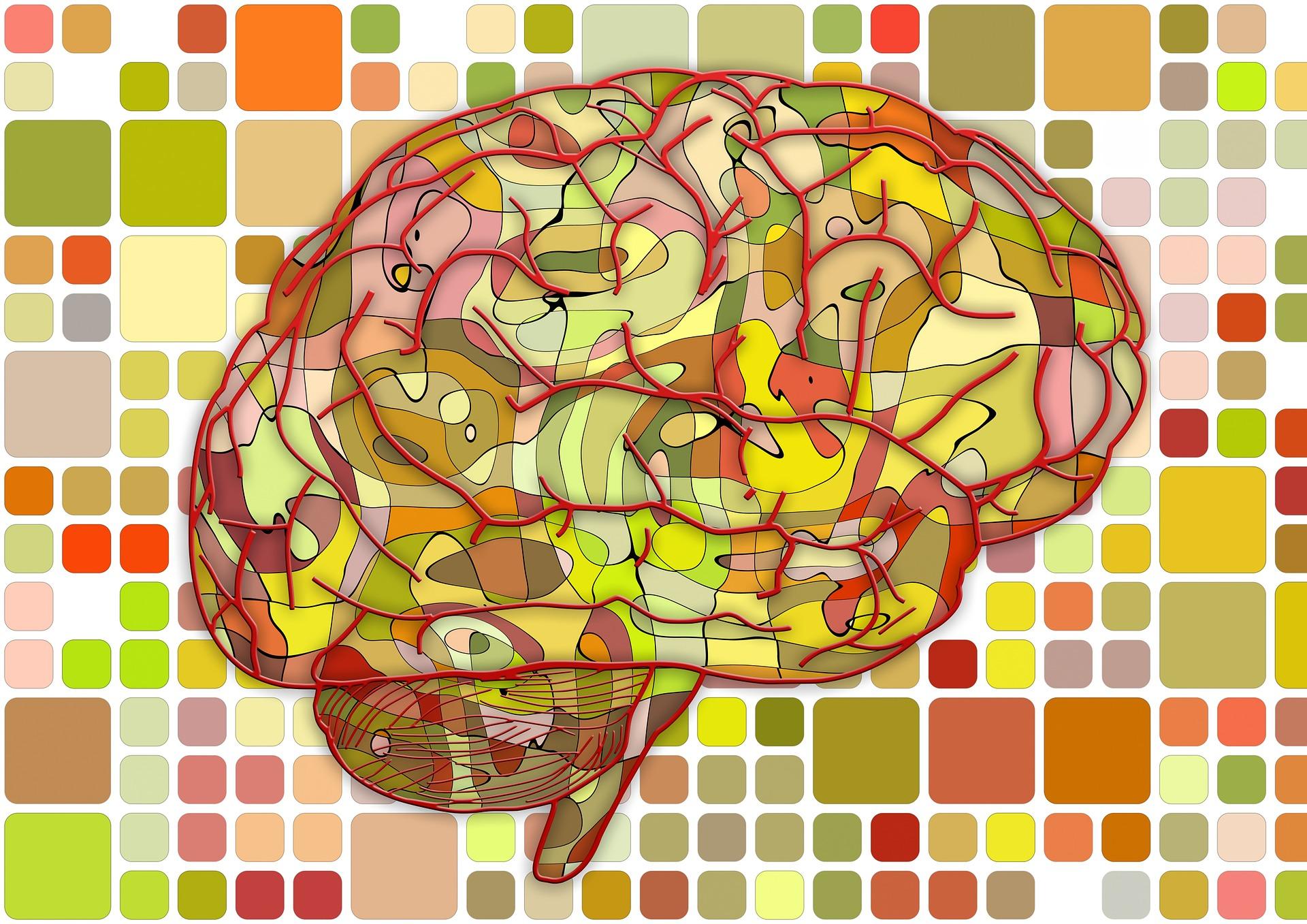 Mozak traži puno radno vreme   Mentalno aktivni   blog   NLP   CARS